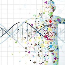 Las TICS y la Medicina de Precisión